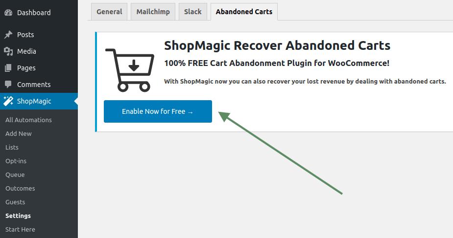 ShopMagic abandoned carts settings